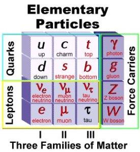 Le particelle del Modello Standard