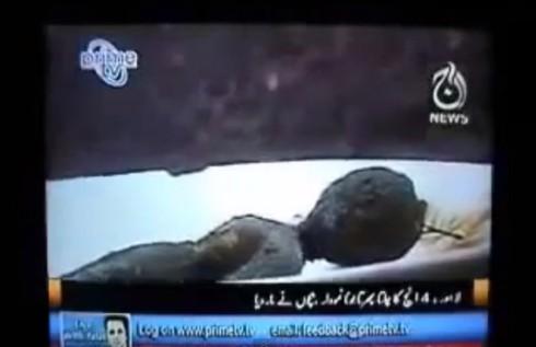 Il corpo alieno ritrovato in Pakistan